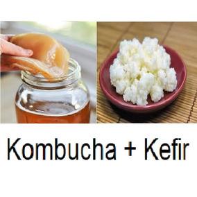 Kit Kefir Do Leite + Kombucha Com Manual E Frete Gratis