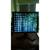 Monitor Dell 17 P170s