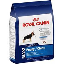 Royal Canin Maxi Puppy Y Adulto 15.88kg Alimento Premium