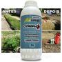 Glifosato Herbicida 1 L - Mata Mato Capina Limpa / Com Vídeo