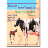 Atlas Colorido De Anatomia De Grandes Animais: Fundamentos