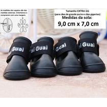 Sapato Botinha Cachorro Antiderrapante Impermeável Extra Gg