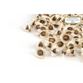 Moringa Semillas Premium 1 Kg Envio Gratis