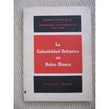 La Colectividad Britanica En Bahia Blanca - Monacci