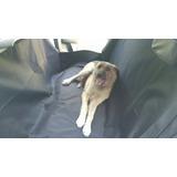 Funda Para Trasladar Mascotas En Auto
