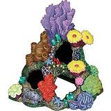 Exóticos Entornos De Indonesia Coral Caverna Del Ornamento
