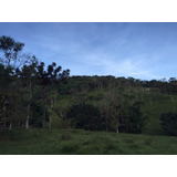 Lindo Terreno Em Santa Catarina - Aceito Permuta - Blumenau