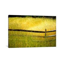 Pintura Arte Sea Of Grass By Bob Rouse, 40x26x0.75