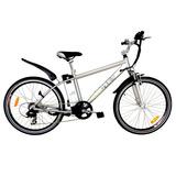 Bicicleta Eléctrica Ecomobile Power Plus 250w - 24v