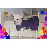Vestiditos De Gala Pug Yorky Chihuahua Pomerania Shihtzu