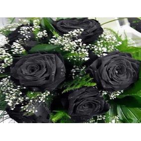 Rosas Negras Do Deserto Pacote Com 30 Sementes Ótimo Preço