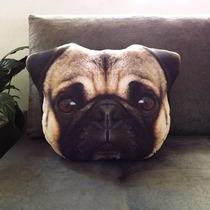 Almofada Pug, Pet, Almofada Cachorro, Decoração, Pillow Dog