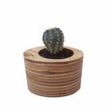 Maceta De Madera - Diseño Innovador Con Planta