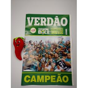Poster Palmeiras Campeão Brasileiro 2016 (loja Do Zé)