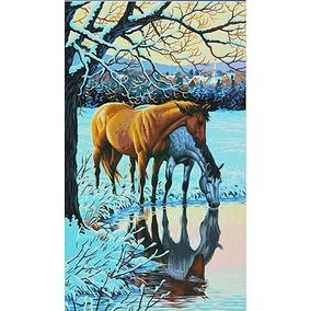 Dimensiones Pintura Obras 73-91492 Pintura Por # Paintworks
