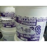 Fijador Sellador Al Agua Concentrado X20lt + Pincel 10 Ofert