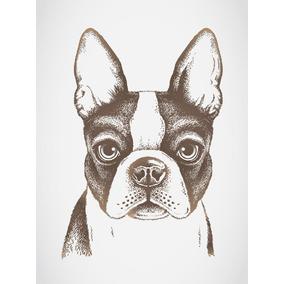 quadro desenho bulldog francs placas decorativas no mercado livre