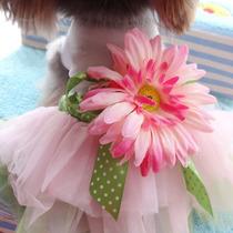 Roupa Para Cachorro Pet Vestido Primavera Verão