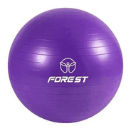 Pelota Yoga Ball Esferodinamia 65 Cm Gym Pilates Fit