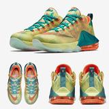 Lebron 12 Low Palmer Jordan Air Max adidas Free Asic Nike