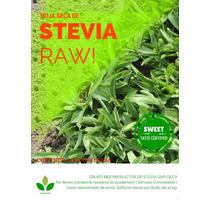 Hoja Seca De Stevia 100 Kg