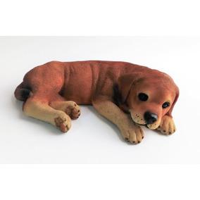 Cachorro De Labrador. Replica En Resina Tamaño Real 40 Cm