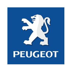 Par Retentor Saida Caixa Peugeot 406 Cambio Automatico