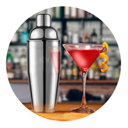 Coctelera Profesional Barman Acero Inoxidable Filtro Cierre