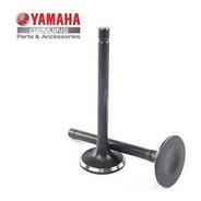 Válvula De Admissão Yamaha Ybr 125/ Xtz 125 08 (1483)