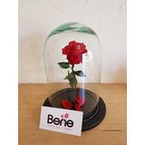 Rosa Rehidratada - La Bella Y Bestia - Rosa Eterna Mini