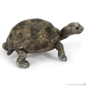 Schleich 14643 Miniatura - Filhote Tartaruga Gigante