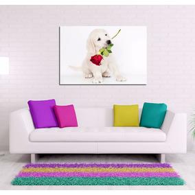Cuadro Perro Labrador Rosa Romantico Love Puppy Pet 20x30cm