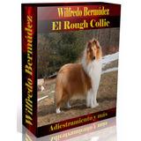 Libro Electrónico El Rough Collie Adiestramiento Y Más.