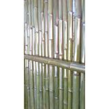 Cercos De Cañas Bambu Pergolas Hacemos