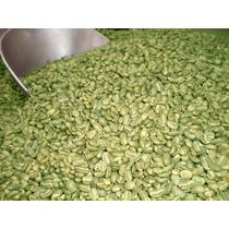 Cafe Oro Verde Organico Chiapas 100% De Altura