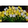 Flores Tulipanes En Tela Gran Variedad