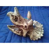 Adorno Acuario Resina Cráneo Triceratops Envio Incluido