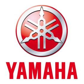 Pacotao 50 Ritmos Teclado Yamaha