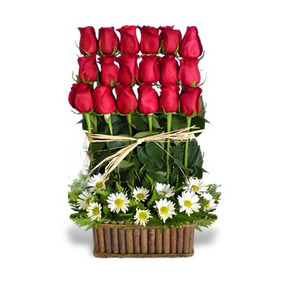 Arreglo De 24 Rosas Y Margaritas A Domicilio Solo Cdmx