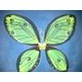 Alas De Hadas De Tul Mariposa Colores Nuevos 55x45 Cm Verde
