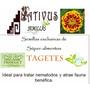 Semillas De Tagetes Oferta + Biblia Del Horticultor 300 Pag.
