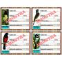 Placa Identificação Pássaros 800unid.