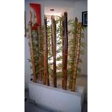 Bambú. Decoración Adorno Jardín Artesanía Bamboo