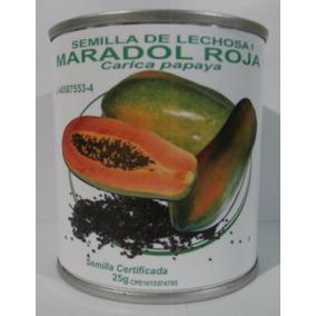 1300 Semillas De Lechosa Maradol Roja. Lata De 25 Gramos.