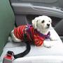 Cinturón De Seguridad Correa Para Perros /concepción