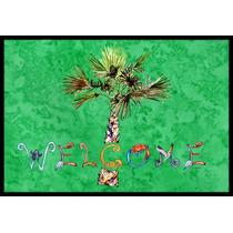 Catalogo de palmeras mexico