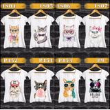 Blusinha Camiseta Gatos Kit 4 Estampas Cat + Frete Grátis
