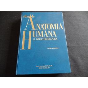 G Wolf Heidegger - Atlas De Anatomia Humana