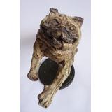 Pug Carlino Esculturas