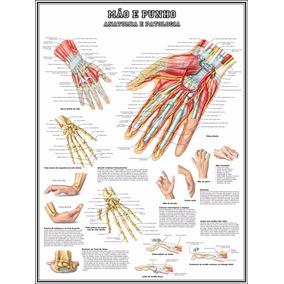 Mapa Hd Anatomia Mão 75x100cm Poster Fisioterapia Medicina